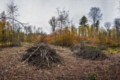 Plener w Podlipcach - Wojciech Czekalski [Listopad 18] 001