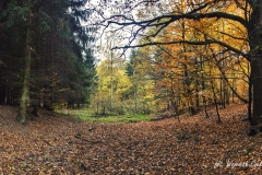 Plener w Podlipcach - Wojciech Czekalski [Listopad 18] 002