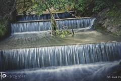 FOTO-Przygoda-w-Świdwinie-Wiosna-19-Ewa-Prygiel-072a