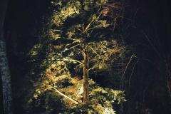 FOTO-Pstryk-w-plenerze-Goleniów-Nocą-Luty-19-Urszula-Macul-010b