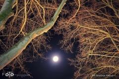 FOTO-Pstryk-w-plenerze-Goleniów-Nocą-Luty-19-Urszula-Macul-019b