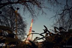 FOTO-Pstryk-w-plenerze-Goleniów-w-Dzień-Kwiecień-19-Kazimiera-Goc-053a