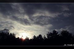 Wanda Obrębska [Zdjęcia Plenerowe] 008