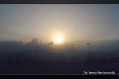 Iwona Pietruszewska [Zdjęcia Własne] 021