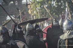 XXIV Festiwal Słowian i Wikingów [Sierpień 18] 3364b