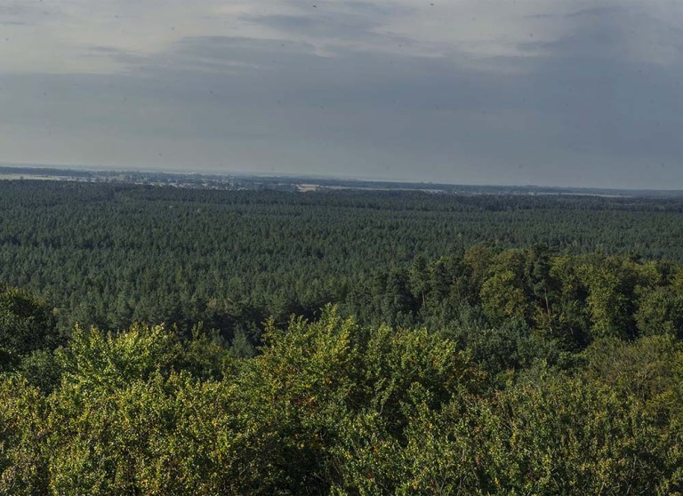 Góra Zielonczyn - Slider 07