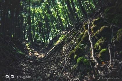 5 - FOTO-Przygoda w Połczynie-Zdroju [Wiosna 19] 1616-1624b
