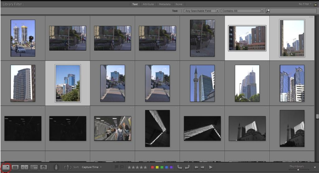 Lightroom Library panoul central Grid view