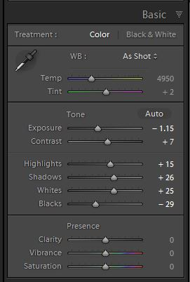 Lightroom develop Basic panel