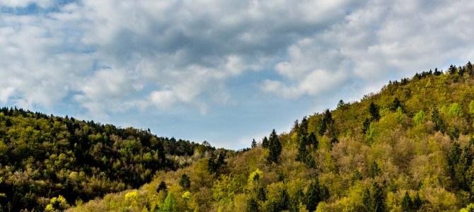 Fotowanderung bei Muggendorf – Linien
