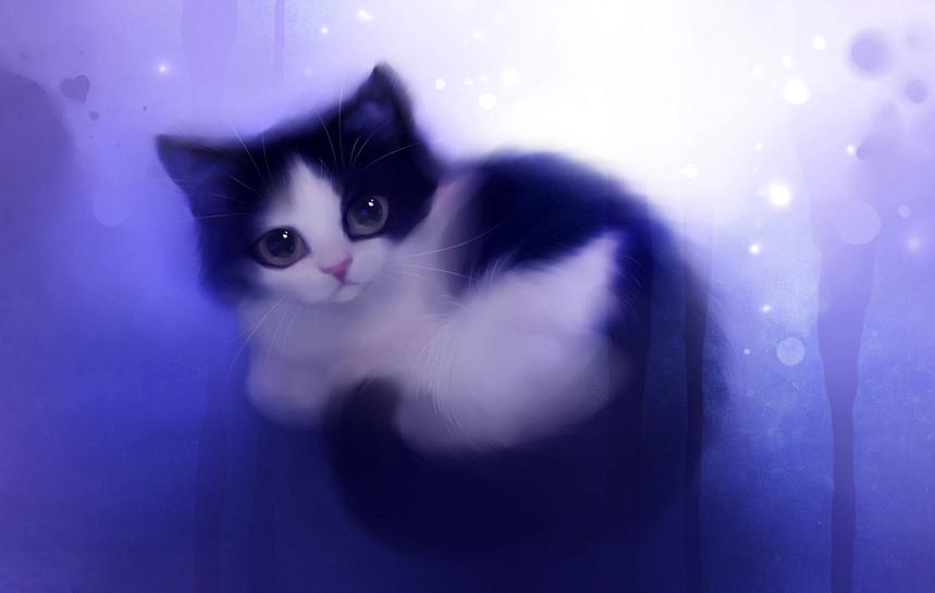 Anime Cat Girl Wallpaper Нарисованные кошки рисунки кошек