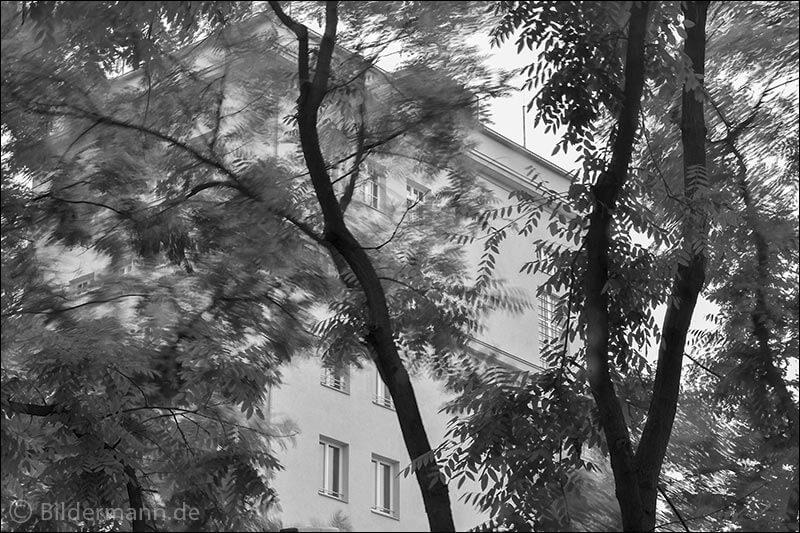 Foto: Hochhaus am Albertplatz, Dresden-Neustadt