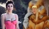 Gerçek Kürk Giyen Modacı Gülşah Saraçoğlu'na Ebru Şancı'dan Sert Tepki