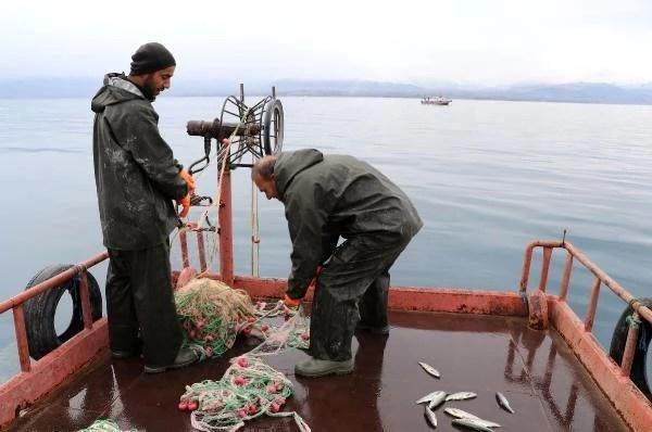 Van'da bereketli balık sezonu