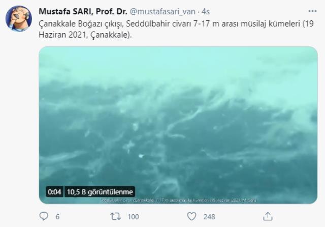 goruntuleri prof dr mustafa sari paylasti 14214443 1755 m