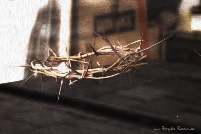 art_20130523_crownofThorns