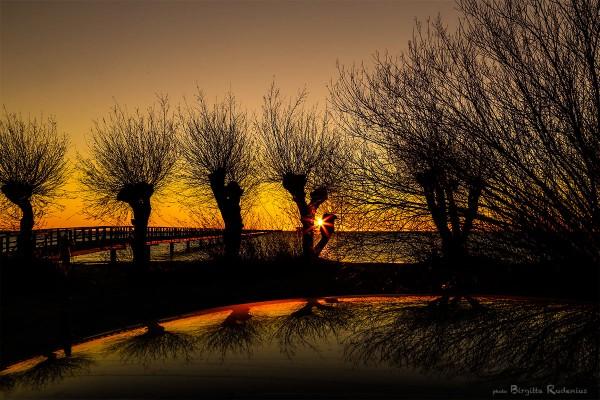 nature_20131124_sunset