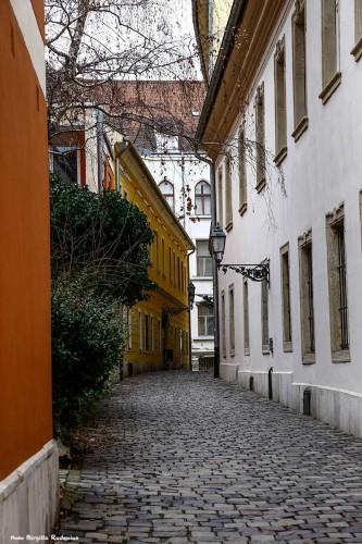 street_20140216_narrow