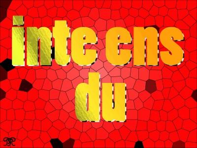 CA4_inteensdu