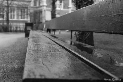 The Long Bench - Waiting for The Talk