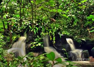 Watching small water falls at KL Bird Park. Location: Kuala Lumpur, Malaysia