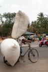 Transport Baumwolle