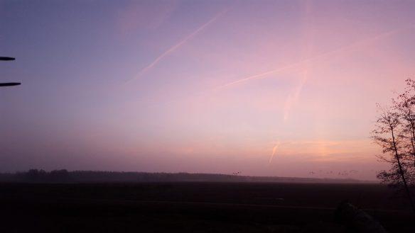 zonsopgang 16