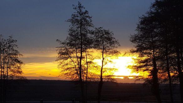 zonsopgang 47