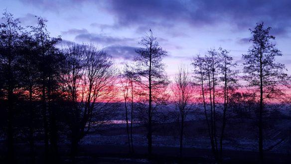 zonsopgang 56