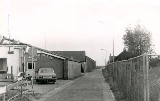 jopie westerling 1980