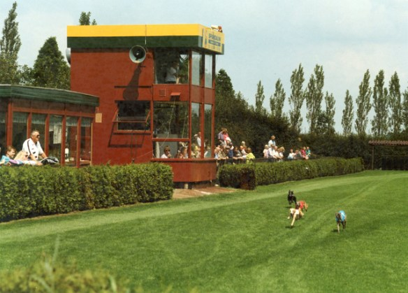 windhonden 1990-3
