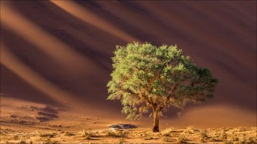 18-namibië landscape-12