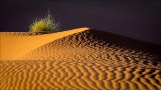 18-namibië landscape-16