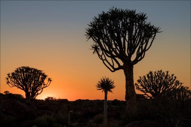 18-namibië landscape-3