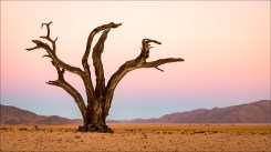 18-namibië landscape-8