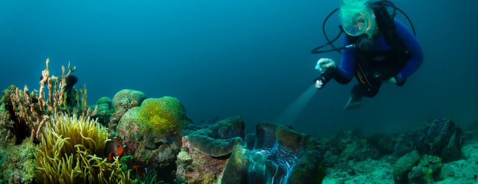 Peter Van den Eynde – Onder water in Puerto Gallera