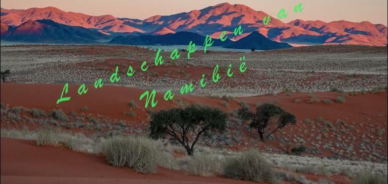 Alidoor Dellafaille – Namibië