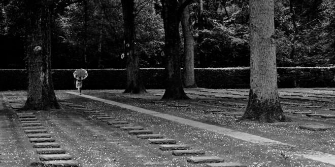 Toon Kerkmans – Vladzlo Diksmuide Soldatenfriedhof