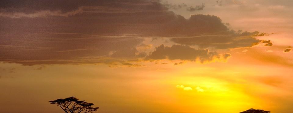 Greet Verelst – Tanzania