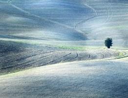 Paul Decoo – Venetie en Toscana
