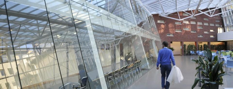 Foto Crea stelt tentoon in Oogkliniek AZ Monica