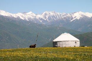 foto 96 Yurt in het gebergte -foto Jozef Mols