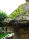 El musgo invade las piedras del viejo Monasterio - Galicia, septiembre 2012