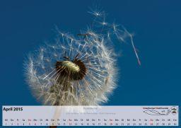 Kalender_04_Apr15