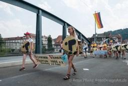 Strandfest_2015-103