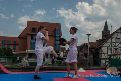 Strandfest_2015-130