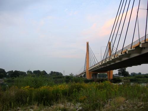 Most Milenijny (V)