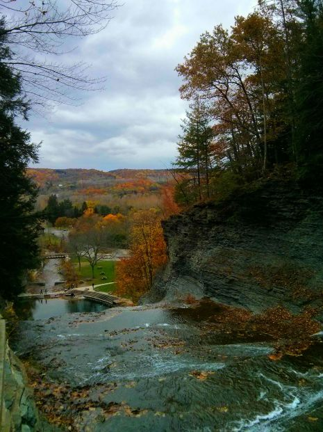 the view from the gorge trail