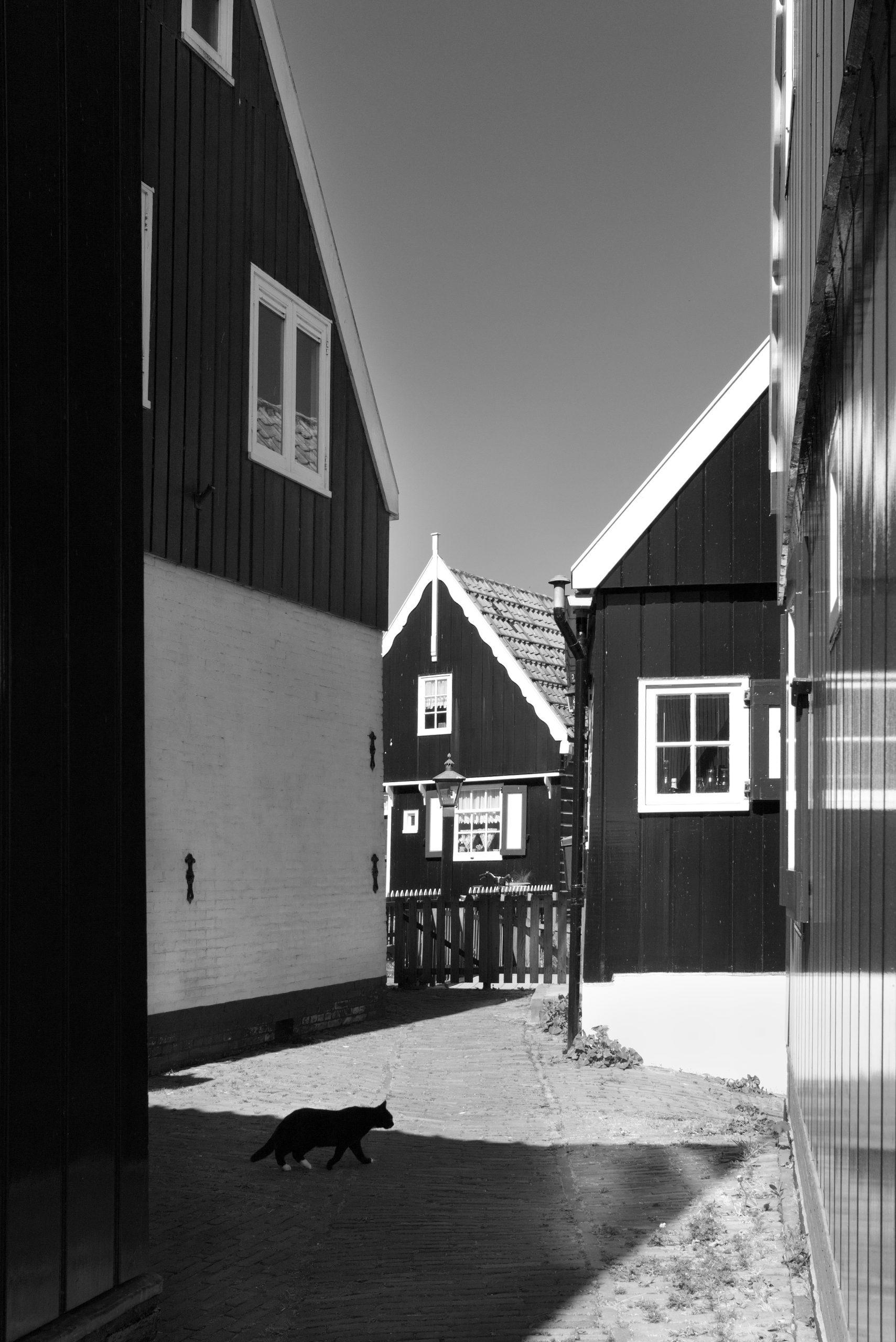 fotograaf Marken Noord Holland