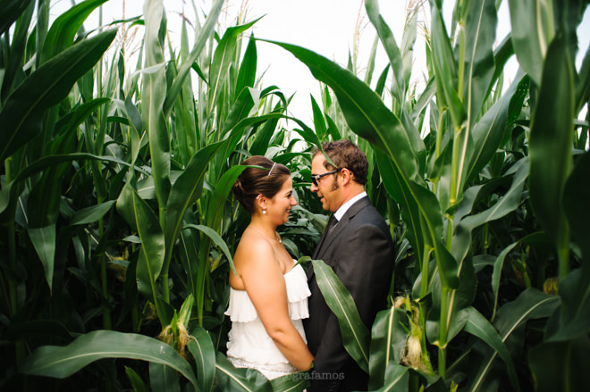 Fotógrafo de casamento Coimbra - romantic portrait of bride and groom in cornfield